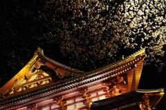 japon-2013-0144