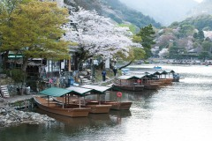 japon-2013-0557