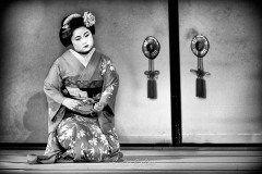japon-2013-0896