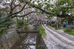 japon-2013-1137
