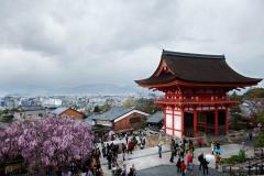 japon-2013-1323