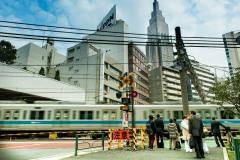 japon-2013-8701