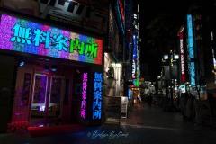 japon-2013-9102