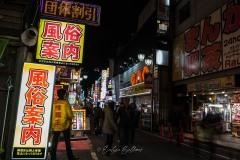 japon-2013-9112