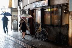 japon-2013-9370