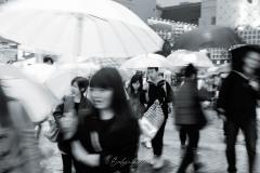 japon-2013-9685