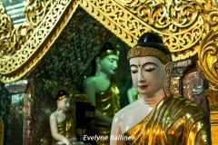 birmanie_8079