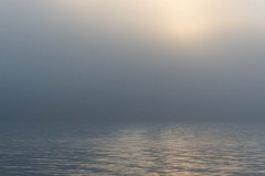 svalbart-2014-9296