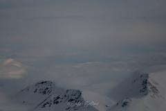 svalbart-2015-2071