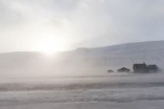 svalbart-2018-4529