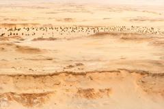 tchad-2013-4757