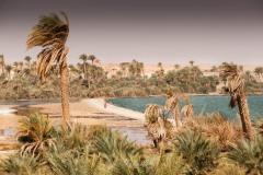tchad-2013-4869