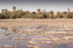 tchad-2013-4872