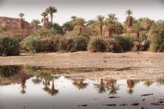tchad-2013-4873