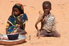 tchad-2013-5162
