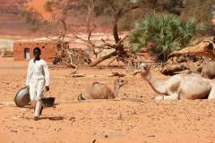 tchad-2013-5168