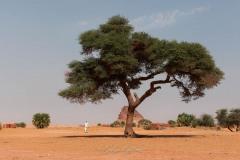 tchad-2013-5180