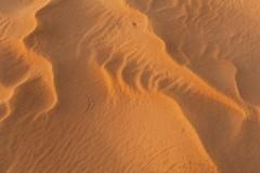tchad-2013-5216
