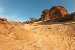 tchad-2013-5291