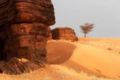 tchad-2013-5410