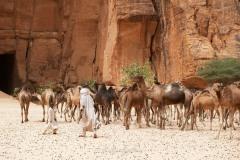 tchad-2013-5520