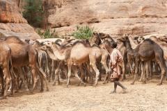tchad-2013-5545