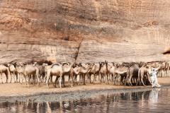 tchad-2013-5551