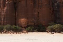 tchad-2013-5594