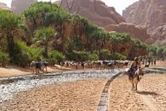 tchad-2013-5878