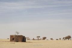 tchad-2013-6010