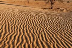 tchad-2013-6430