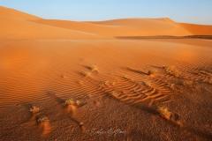 tchad-2013-6536