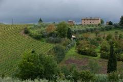 toscane-2013-0388