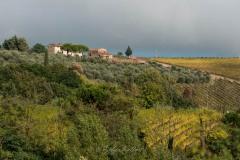 toscane-2013-0436