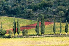 toscane-2013-0824