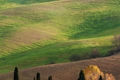 toscane-2013-0832