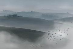 toscane-2013-0961