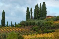 toscane-2013-1088